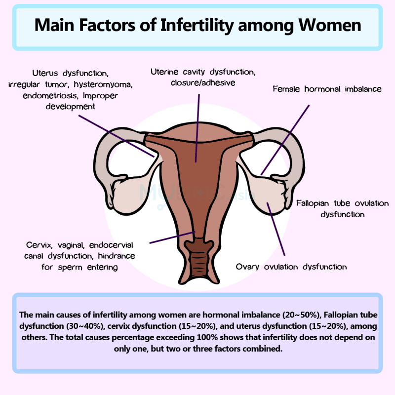 All your questions about ivf answered by the doctor mydoc asia main factor of infertility among women ccuart Choice Image