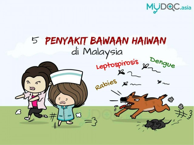 [Info grafik] Bagaimana Mencegah 5 Penyakit Bawaan Haiwan yang Biasa di Malaysia